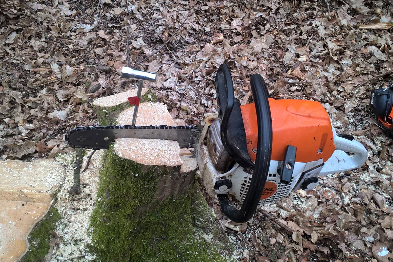 Schraubstock im Wald