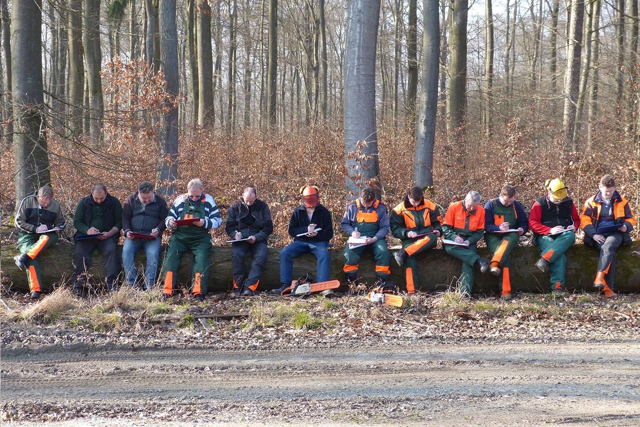 Klassenzimmer Wald - Forst Meinl